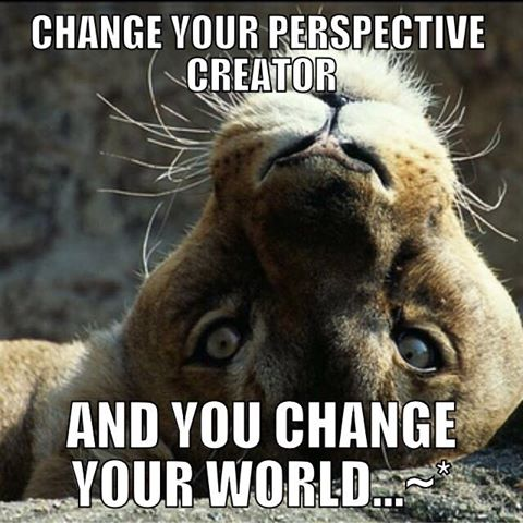 Change your perspective and you change your world